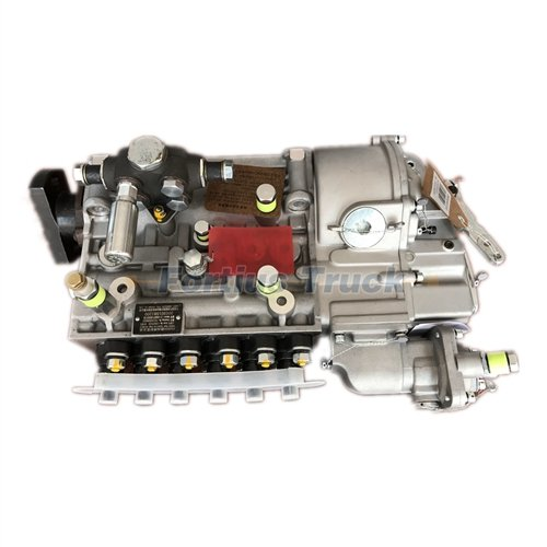 Fuel injection pump assembly for Sinotruk Howo VG1560080023